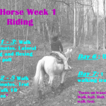 #FITHORSE Week 1