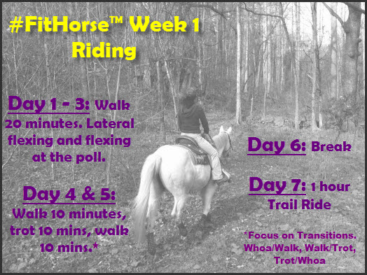 FitHorse Week 1 Riding