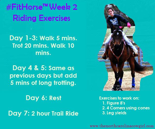 FitHorse Week 2 Riding Exercises