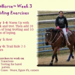 #Fithorse Week 3 Riding Routine