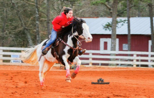 barrel racing run home