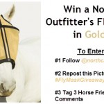 fly mask giveaway
