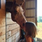 horse kisses girl