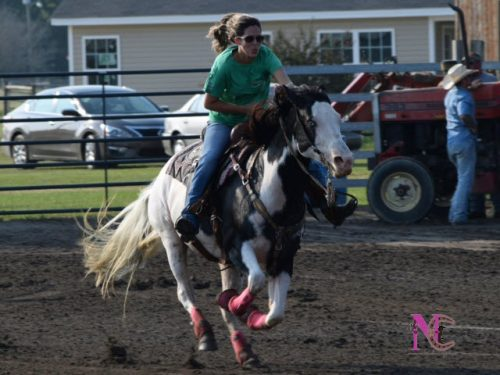 barrel-racing-paint-horse-mare