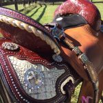 barrel_saddle