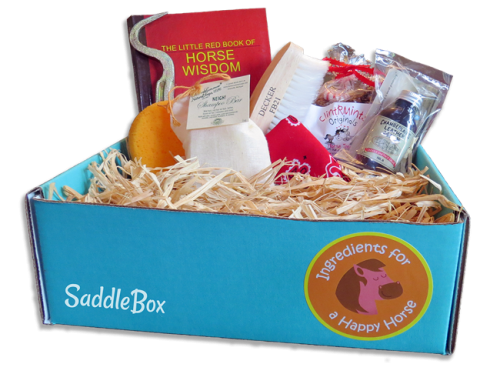 SaddleBox-Monthly-Horse-Subscription