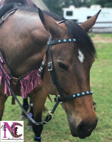 Two Horse Tack bridle